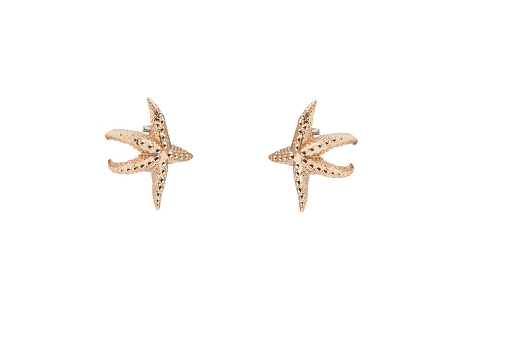 Star fish bronze earrings