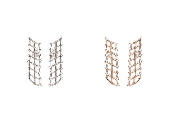Cage and studs bronze earrings / Cage and studs silver earrings