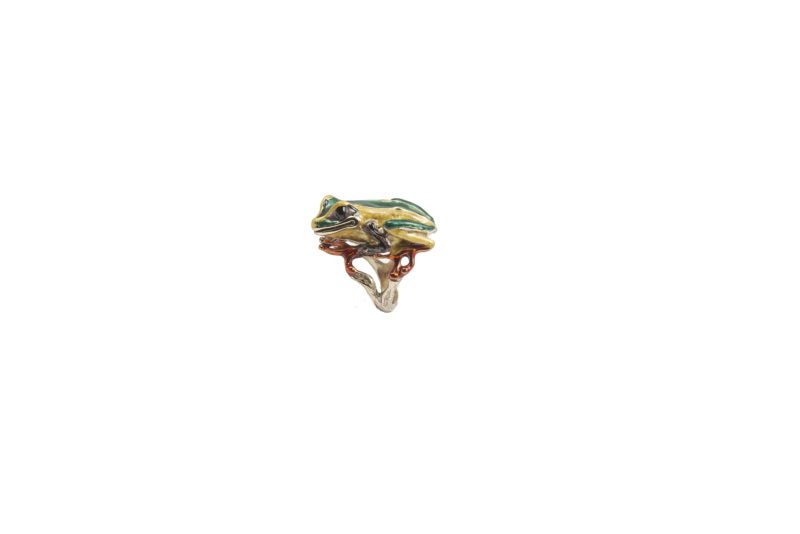 Big froggy bronze ring with enamel